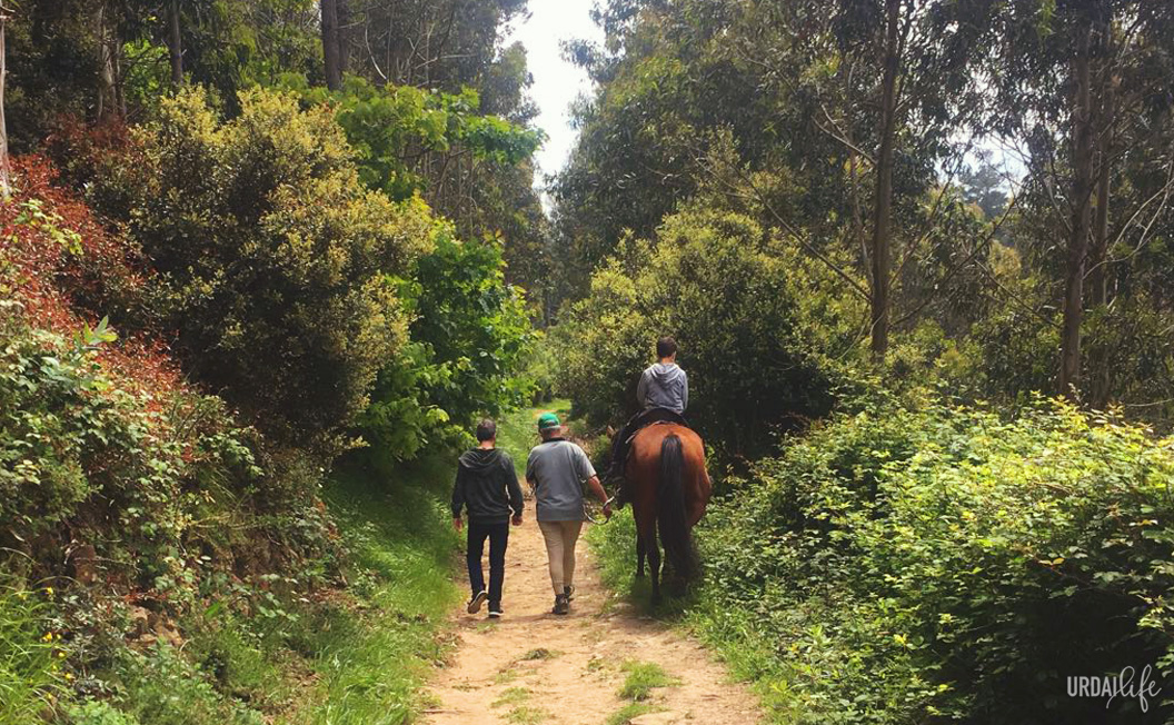 Elantxobeko Zaldixek, rutas a caballo en Elantxobe
