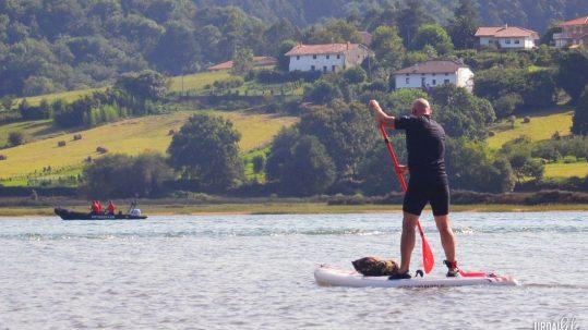 Paddle surf en la ria de Urdaibai, actividades en la reserva en verano